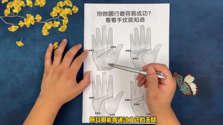手纹看你做哪一行最容易成功?