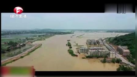 庐江:急流中的生死救援(上)