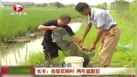 长丰:省级贫困村 两年就脱贫