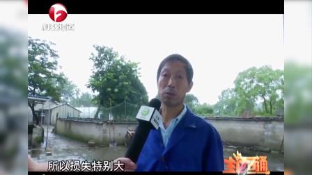 《生活E点通》:泾县——灾后自救忙!共同努力恢复正常生活
