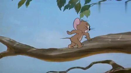 猫和老鼠:杰瑞跟秃鹫耍心眼,在绝对实力面前,完全没用(1)
