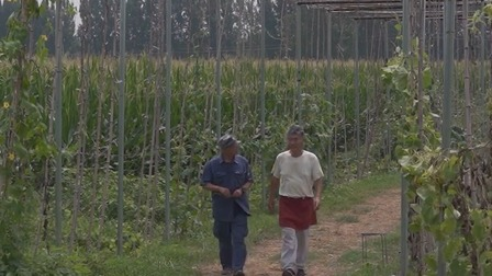 两位日本专家在中国携手搞农业