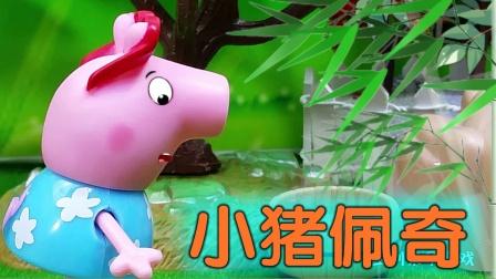 小猪佩奇和伙伴收集水果,猪小妹口渴了,怎么办呢