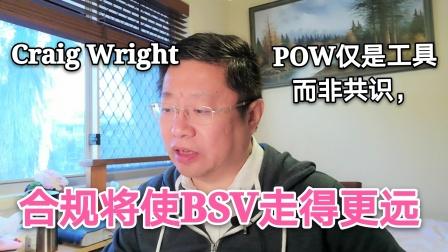 再读Craig Wright,POW仅是工具而非共识,合规将使BSV走的更远。~Robert李区块链日记778