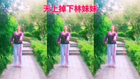 王妹儿广场舞(381号)《天上掉下个林妹妹》