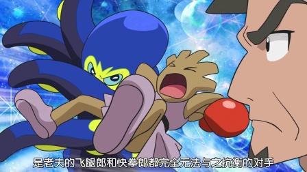 宠物小精灵新动画 第34话 孤高的斗士彩豆!  八爪武师的威胁! 剑盾