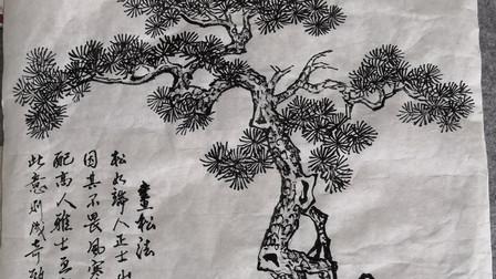 松树的画法示范