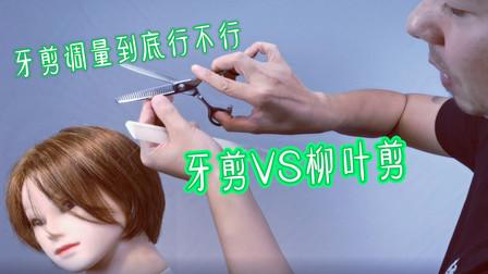 牙剪调量到底行不行,牙剪VS柳叶剪
