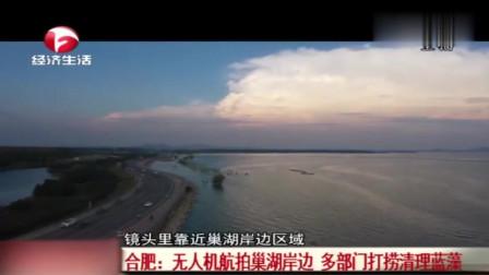 合肥:无人机航拍巢湖岸边 多部门打捞清理蓝藻