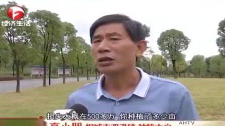 安庆:保险预赔 受灾农户拿到理赔款