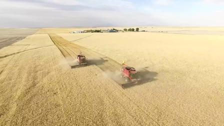 黑科技,美国农业怪不得全球称霸,这下服气了