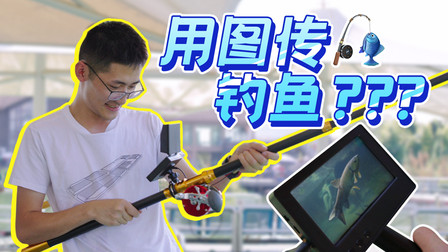 【Vlog】摸鱼也能上图传?影视飓风摸鱼大赛!