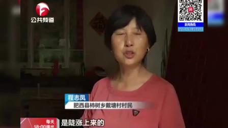 肥西:柿树岗的抗洪故事——乡村突遭洪水,派出所紧急出警
