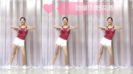火爆DJ广场舞《野花香》32步经典摆胯