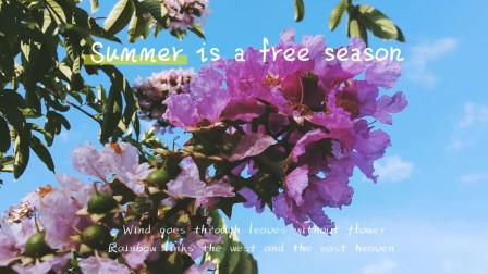 音乐视频011-漂亮的花儿 自然美景 纯音乐 dj歌曲 网络红歌 乡村美景