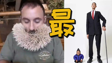 世界上最高和最矮的人 胡子里塞下最多的东西 各种世界之最