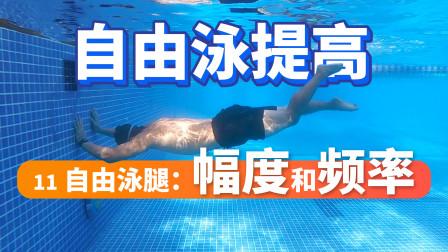 【自由泳提高】11.自由泳腿:幅度和频率|梦觉教游泳