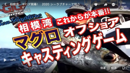 SeaRapture系列05-相模湾 キハダ開幕! 2020シーラプチャーで狙うキハダ