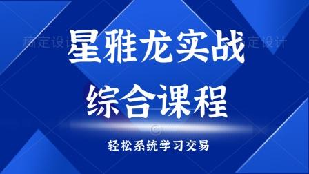 星雅龙实战综合课程 技术点综合之现货原油解析