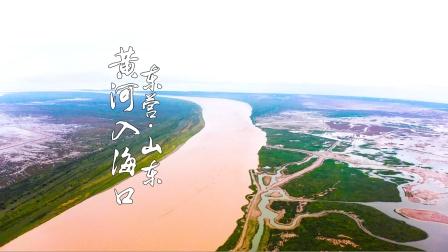和火哥一起领略母亲河黄河入海口壮美景色,火筵川菜回家下一站贵州