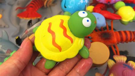 认识小海龟等7种海洋生物 小马识动物