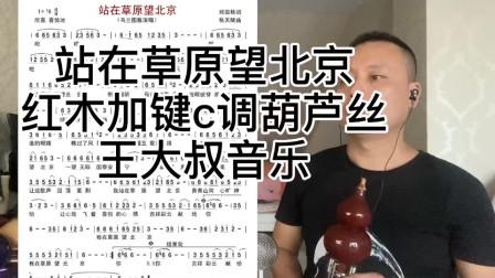 《站在草原望北京》红木加键C调演奏,不该变原指法能吹高音,方便易吹