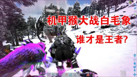 方舟生存进化:普罗米修斯09,高科技机甲猴登场!战雪山白毛象!