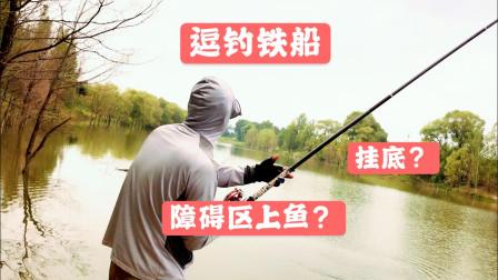 非著名钓鱼人五五期:雨后逗钓障碍区,不挂地球怎能上鱼?