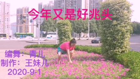 王妹儿广场舞(382号)今年是个好兆头
