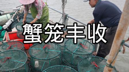 泰叔抓到开海以来最多海货,个个蟹笼都有惊喜,泰婶直接拉去卖