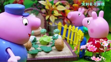 菜园计划失败了,小猪佩奇和爷爷能想出好办法吗