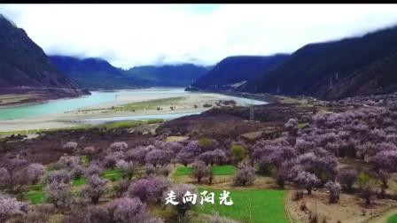 李娜这首《走进西藏》,空灵之声,宛如天籁