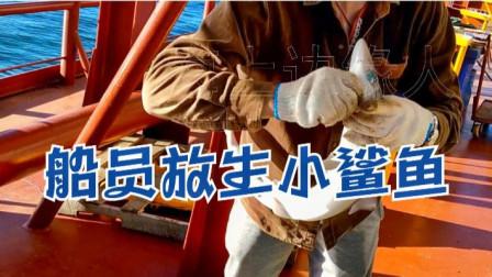 中国船员海上钓获小鲨鱼,放生后鲨鱼二次来咬钩,鲨鱼真是瞎折腾