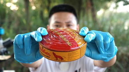 探索世界上最臭的罐头,反正我吐了好几次