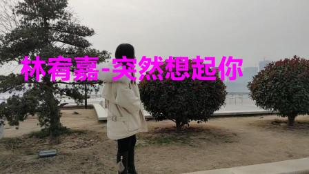 经典老歌1000首在线播放《林宥嘉-突然想起你》