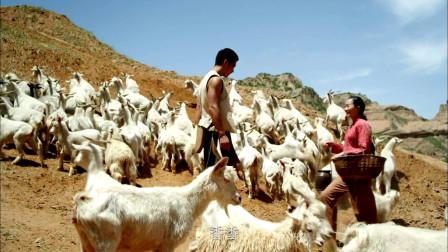 女子喜欢上放羊小伙,每天上山送饭,放羊小伙吃的满脸幸福