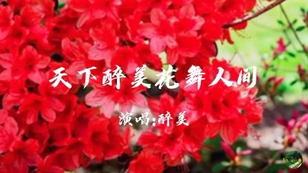 天下醉美花满人间,看鲜花满山快乐似仙