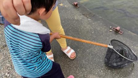【Happy face】【Children】面包超人  这鱼日本人不吃中国抢着吃呢