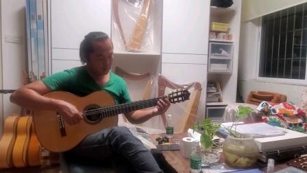 小蒋吉他 巴西玫瑰木古典吉他 罗拔即兴试琴