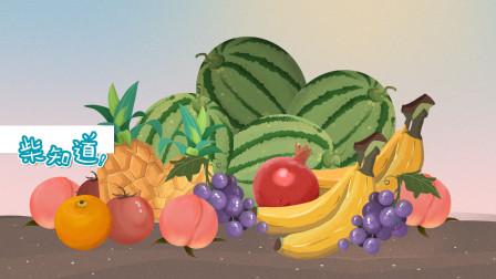 人类对无籽水果做了哪些改造?没有种子,水果靠什么传宗接代?
