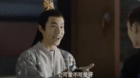 三生三世十里桃花:元贞拉着白浅表感谢,夜华吃醋直接现身