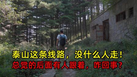 临沂小伙2天1夜登泰山,走一条人少的驴友线路,附登山路线和攻略
