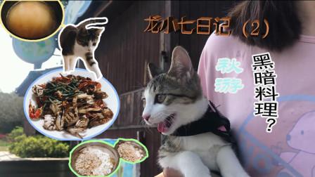 秋游--吃---黑暗料理?-龙小七日记(2)