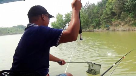 排灌站闸口被人下粘网,都说这里钓不到鱼,结果恰恰相反