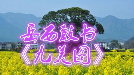 刘纯松岳西鼓书《九美图》第二十七集