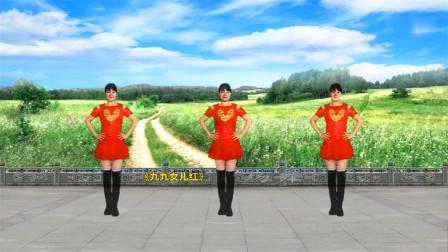 中老年简易16步广场舞《九九女儿红》