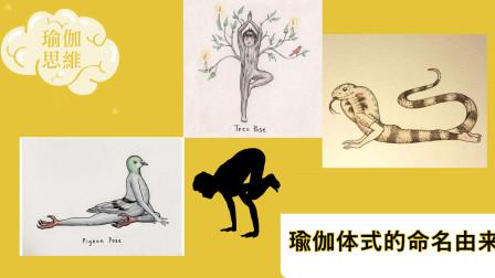 瑜伽体式的命名由来,像什么东西就叫什么名字?