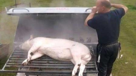 """猪好吃可毛却是难刮干净,于是它来了,""""刮猪毛神器""""走来了!"""