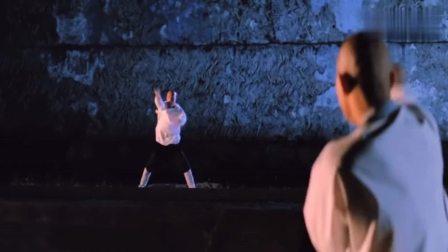 中国古拳法之螳螂拳:分有七星螳螂、梅花太极螳螂、摔手螳螂……