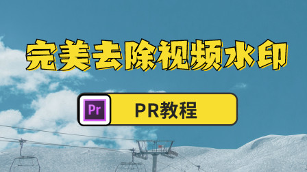 【PR教程】完美去除视频水印